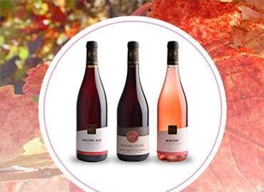 Vins rouges & rosés